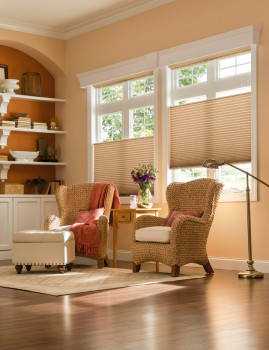 cellular shades are energy efficient, also help to offer sound