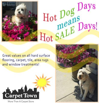 Hot sale days - featuring our dogs