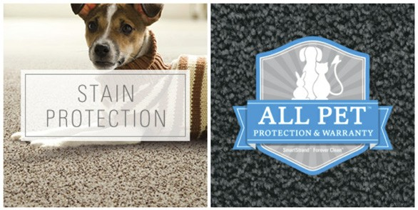 All Pet protection and warranty, dog with stain protection banner - Karastan Rebate