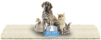 All Pet protection warranty logo with animals - Karastan Rebate